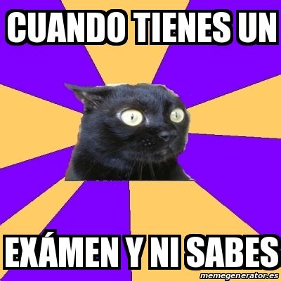 Anxiety Cat Meme Generator - meme anxiety cat cuando tienes un ex 225 men y ni sabes