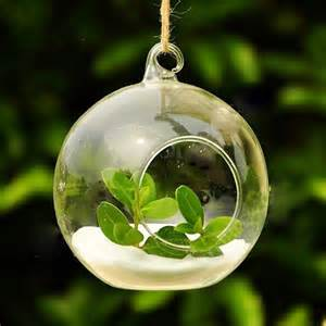 8cm glass hanging planter air plant terrarium globe container