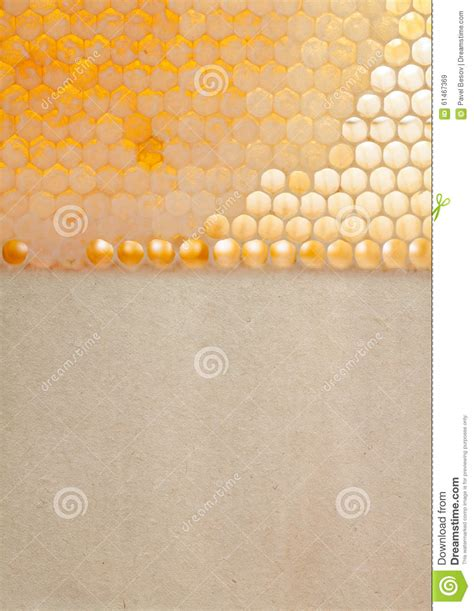 gold honeycomb pattern organic yellow gold honeycomb texture with fresh stock
