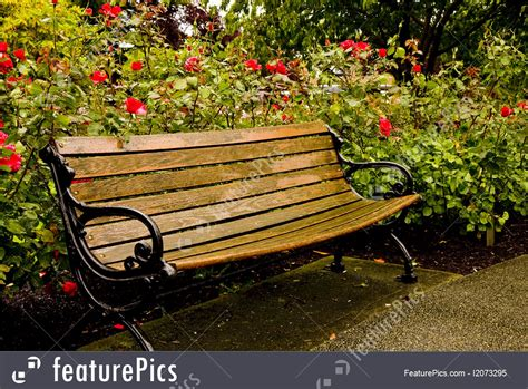 old park benches image gallery old park bench