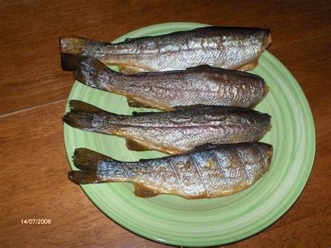 smoked trout recipe www ifish net let s eat pinterest