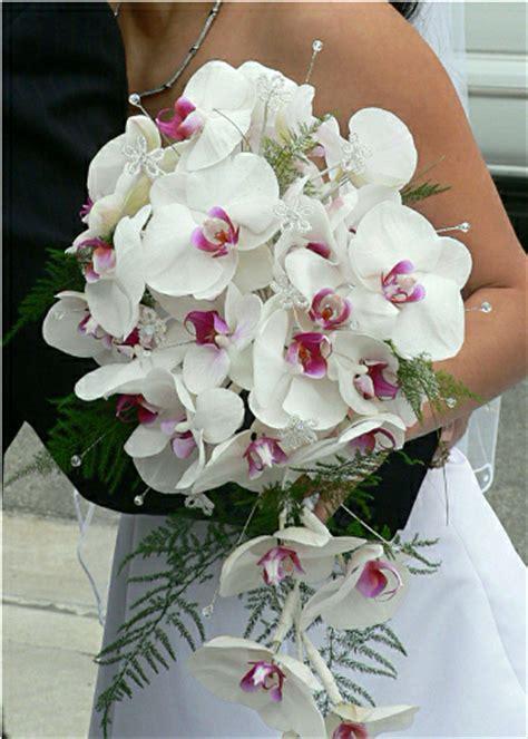 i fiori e il loro significato lovely planning i fiori e il loro significato