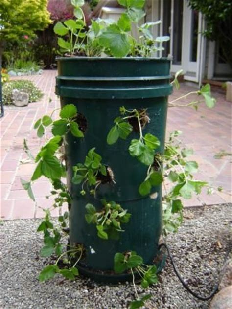 Strawberry Tower Planter by Build Strawberry Planter Woodworking Projects Plans