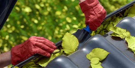 looking for something to clean gutters gutter cleaning service bubbles window cleaning