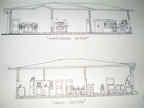 longitudinal section longitudinal section and cross section my drawing by