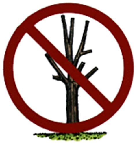do not cut the tree to get the fruit tree rhymestore is a collection of all types of