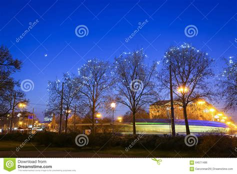 alberi illuminati alberi illuminati in citt 224 fotografia stock immagine
