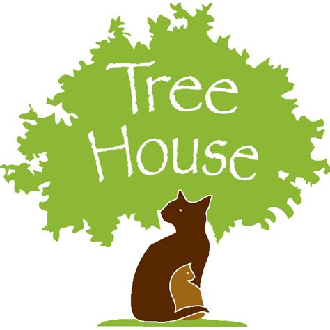 tree house chicago the real tree house cats of chicago