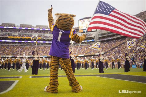 lsu school colors lsu mascot auditions lsusports net the official web
