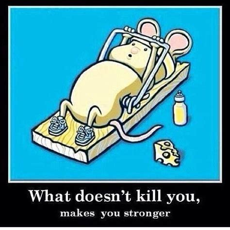 stronger what doesnã t kill you an addictã s ã s guide to peace books what doesnt kill you makes you stronger imghumour
