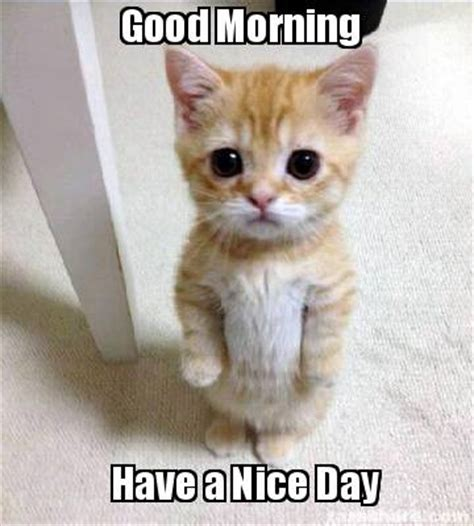 Have A Good Day Meme - meme creator good morning have a nice day meme generator