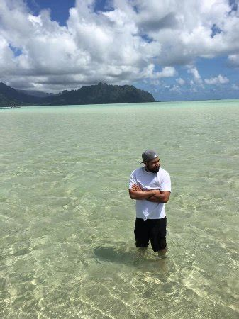 kaneohe sandbar boat rental kaneohe bay private charters all you need to know before
