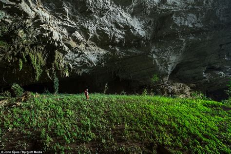 cave plants laos kayakers capture tham khoun ex cave s incredible rock