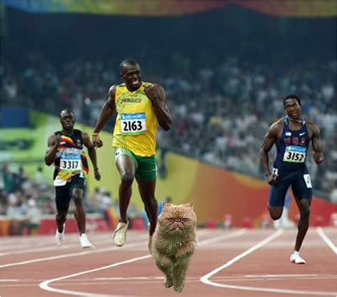 pictures of usain bolt house usain bolt house pictures to pin on pinterest pinsdaddy