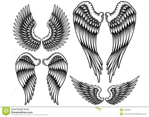 set of wings stock vector image of clip element emblem