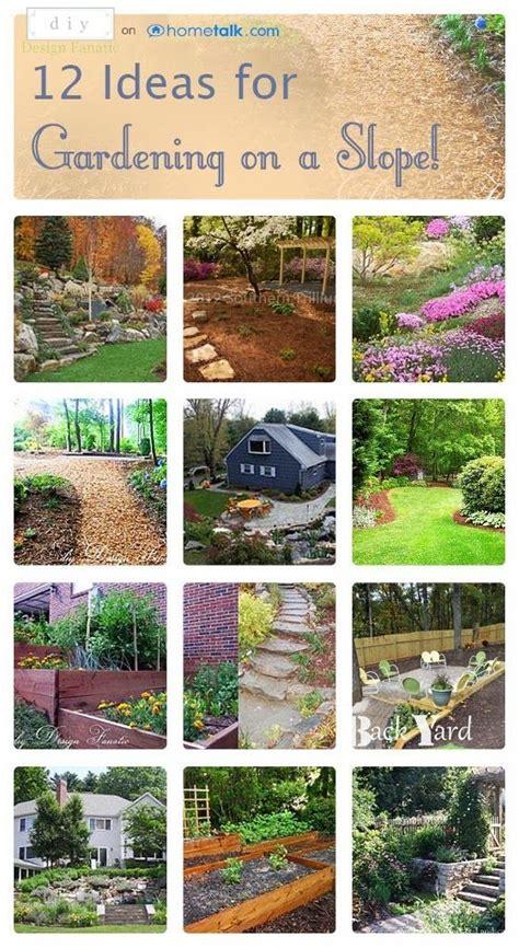 ideas  landscaping   slope sloped garden