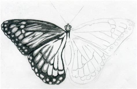 easy butterfly butterfly drawings