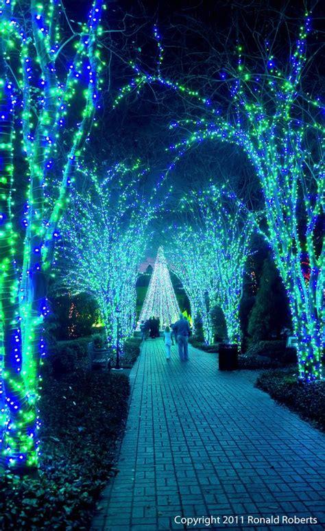 all green christmas lights christmas lights card and decore