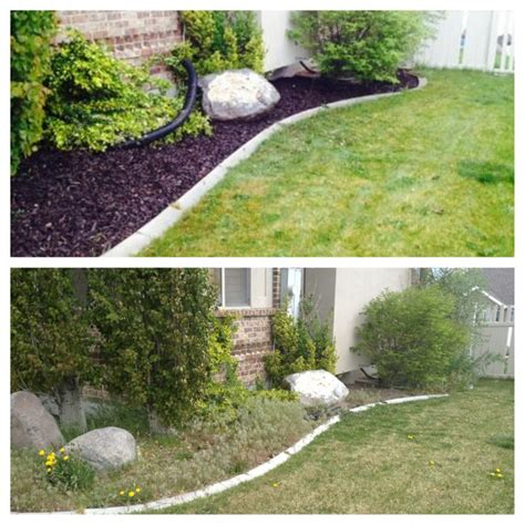 14 best images about yard clean ups before after