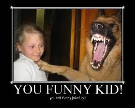 funny dog pictures with quotes funny dog picture puppy