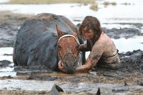 sabbie mobili cavallo salvato dalle sabbie mobili in australia le foto