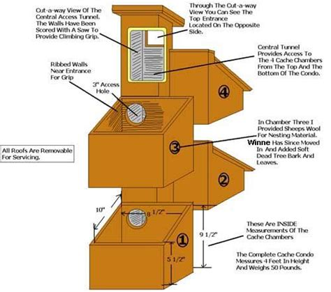 Squirrel Houses Plans Squirrel Nesting Box Search Small Pet Homes And Feeders Search Boxes