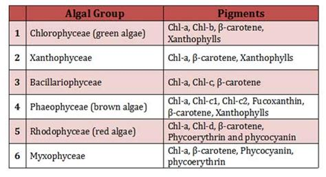 food chemical pigments names pigments of red algae green brown algae ppt