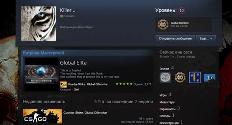steam community guide make your steam community guide how put cs go rank in steam