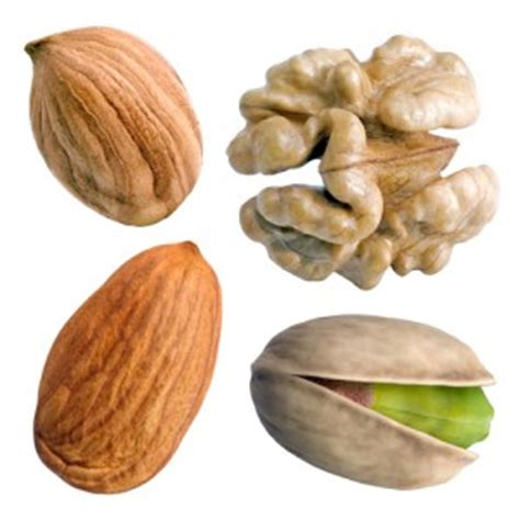 protein nuts protein and calories in nuts weight loss for all