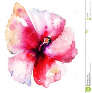 red hibiscus flower royalty free stock image image 35130266