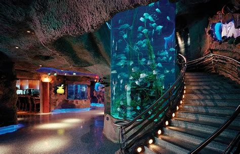 Akuarium Tangki By Loak Cb kirksey architecture landry s downtown aquarium houston