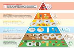 new irish food pyramid any basis in science eating atkins