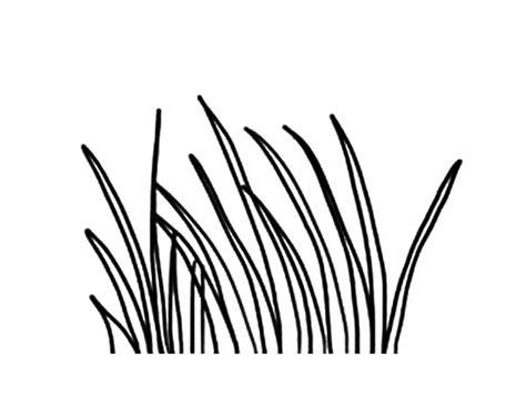 plants world grass coloring pages color luna