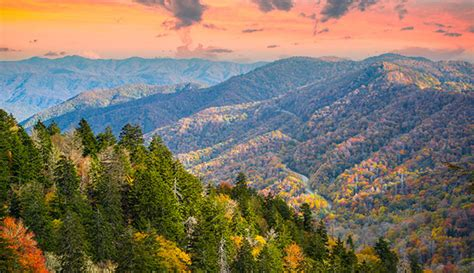 10 top things to do on a great smoky mountains vacation