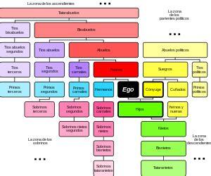 cuarto grado de consanguinidad y segundo de afinidad consanguinidad wikipedia la enciclopedia libre