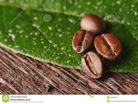 Coffee Beans And Leaf Royalty Free Stock Photos   Image