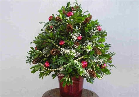boxwood tabletop christmas tree craft fresh boxwood tabletop tree for the holidays fork events east end local