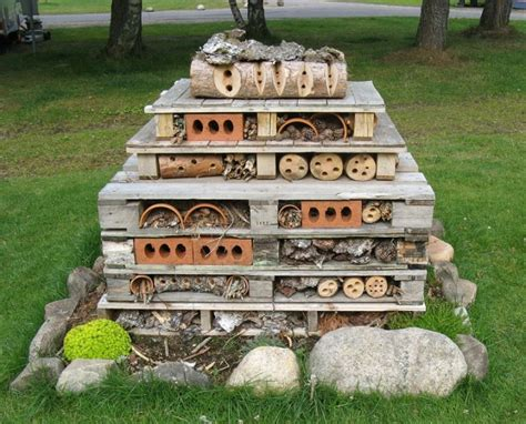 hotels with bed bugs insect hotel nifty homestead