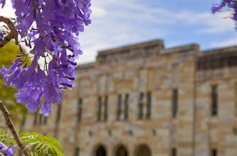 Asia Mba Ranking 2015 by Uq Mba Ranked The Asia Pacific S Best Yet Again Uq