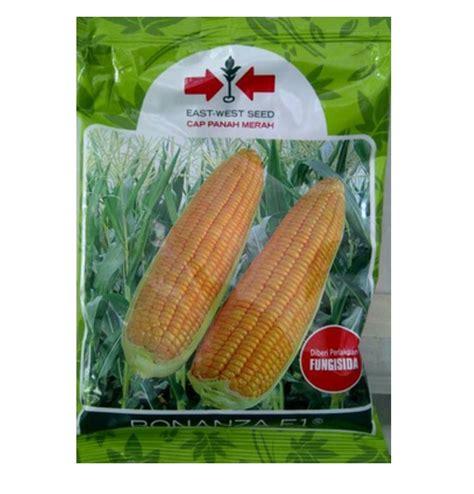Benih Jagung Manis Bonanza F1 jual benih jagung bonanza f1 200 gram panah merah