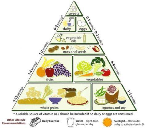 alimentazione per lo sportivo l importanza dell alimentazione per lo sportivo