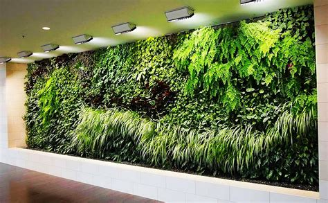 Best Green Wall Solution Kamling Enterprise Limited Live Wall Garden