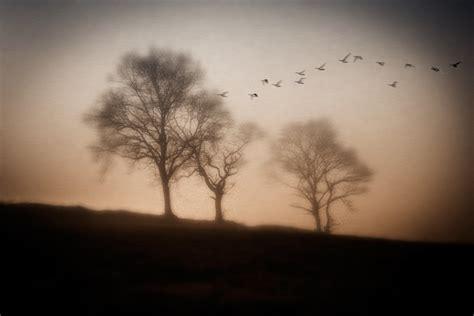 imagenes surrealistas de sueños blanco y negro fotos desde el coraz 243 n mis fotos y lo que hay detr 225 s de