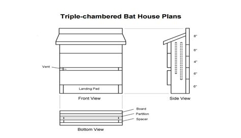 how to house design how to make bat house plans