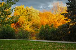 fall colors in wisconsin fall colors in baraboo wisconsin charlene chion