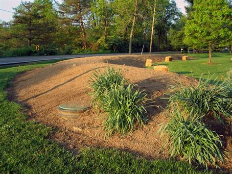 nothing stops a mantis septic mound landscaping ideas pinterest landscapes google and