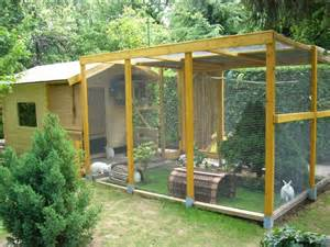 Guinea Pig Outdoor Hutch Winter Bunnies How To Protect Rabbits From The Cold
