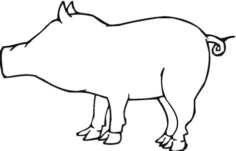 Pig Outline by Pig Outline Cliparts Co