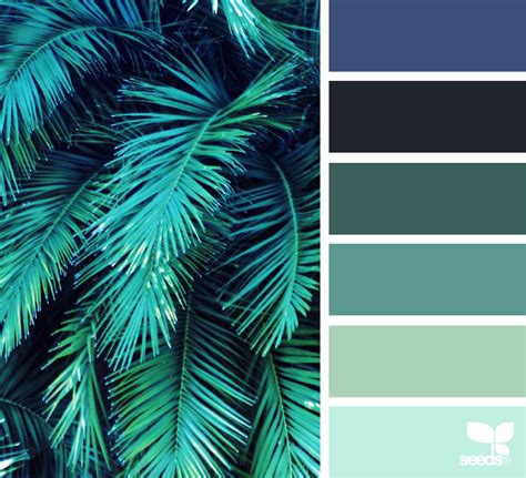 color frond design seeds