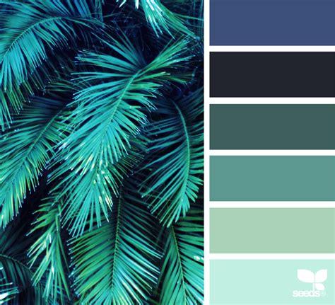 color frond design seeds